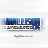 Wallison CDs ofc