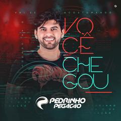 Capa do CD Pedrinho Pegação - Promocional 2018.4 #VocêChegou