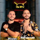 Wesley e Wanderson oficial