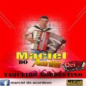 marciel do acordeon