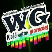 WG WELLINGTON GRAVACÕES