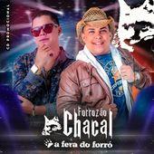 Forrozão Chacal
