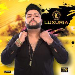 Capa do CD BANDA LUXÚRIA CD VERÃO 2018