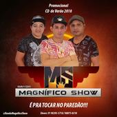 BandaMagnificoShow