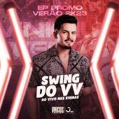 Vinicius Veras Fortes de Souza