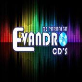 EvandroCDSdeParnaiba Pi