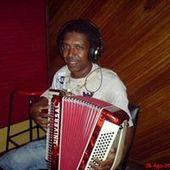 thinga do acordeon