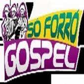 Só Forró Gospel