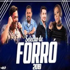 SELEÇÃO FORRÓ 2019 - AS MELHORES MÚSICAS DO MOMENTO