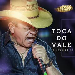 Capa do CD Toca do Vale - O Rei do Forró