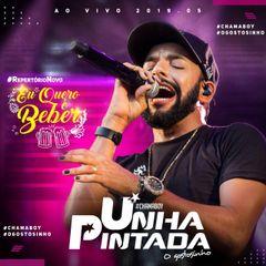 Capa do CD Unha Pintada Eu Quero é Beber Ao Vivo 2019.5