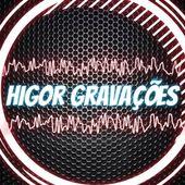 Higor Borges Da Silva