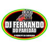 Fernando Do Paredão ZL