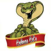 Cobra CDs
