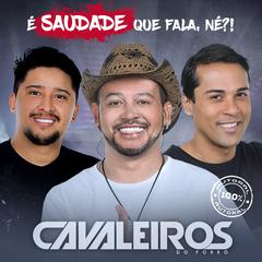 Capa do CD CD É Saudade Que Fala, Né?!