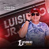 Luisinho junior
