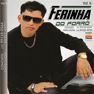 Ferinha Do Forro Vol 6 Forro Sua Musica