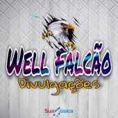 Well Falcão Divulgações
