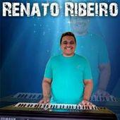 Renato Ribeiro O Fera Dos Teclados