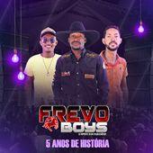 Banda Frevo Di Boys