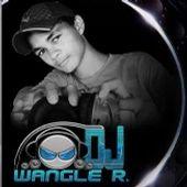 Wangle Ribeiro