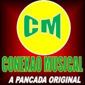 BANDA CONEXÃO MUSICAL