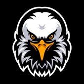 Anderson Felipe