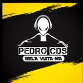 Pedro CDs De Bela Vista MA