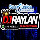 DJ RAYLAN DOS PAREDÕES