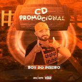 O BOY DO PISEIRO